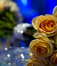details-wedding-South-Florida-Photography-miami-fort-lauderdale-west-palm-beach-flowers-1276