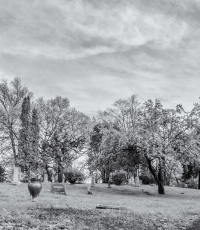Nisso-Studios-Fine_Art-Prints-For-Sale-Minnesota-Trees-Landscape-cementary-0661
