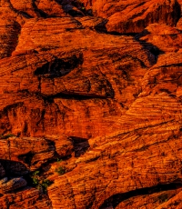 Nisso-Studios-Fine_Art-Prints-For-Sale-Nevada-Las-Vegas-Red-Rock-Trees-Landscape-3033