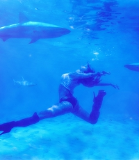 under-water-nisso-jaime-chalem-photography-miami-fort-lauderdale-west-palm-beach-underwater-dancer-sharks-0738