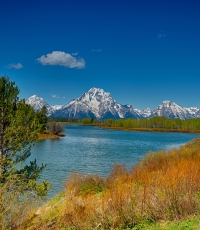 Nisso-Studios-Fine_Art-Prints-For-Sale-Wyoming-Yellowstone-National-Park-Trees-Landscape-Mountain-1408