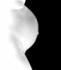 Maternity-pregnancy-photography-south-florida-miami-fort-lauderdale-west-palm-beach-nude-280